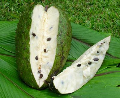 Costa Rica Cost Of Living Update: 1 Guanabana Fruit-$6.50