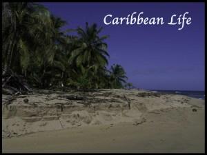 Caribbean Life in Costa Rica