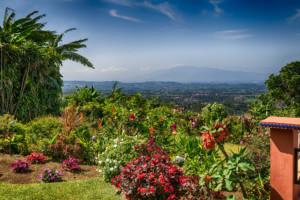 Grecia Costa Rica