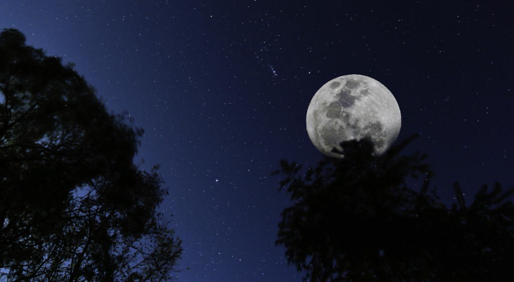 Brasilito Moon
